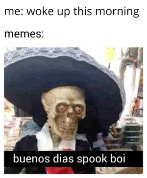 And so it begins: me: woke up this morning  memes:  S  buenos dias spook boi And so it begins