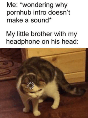 You little evil, i thought you were SlEePiNg: Me: *wondering why  pornhub intro doesn't  make a sound*  My little brother with my  headphone on his head: You little evil, i thought you were SlEePiNg