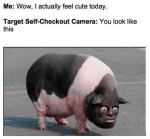 Daily Funny Photos 001: Me: Wow, I actually feel cute today  Target Self-Checkout Camera: You look like  this Daily Funny Photos 001