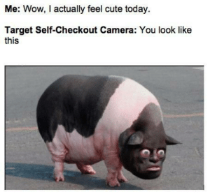 Beautiful, Cute, and Target: Me: Wow, I actually feel cute today  Target Self-Checkout Camera: You look like  this Why can't I be beautiful