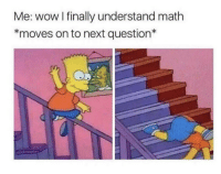 Meirl: Me: wow I finally understand math  *moves on to next question* Meirl