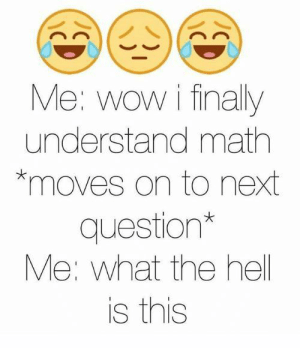 If you are a student Follow @studentlifeproblems: Me: wow i finally  understand math  *moves on to next  question*  Me: what the hell  is this If you are a student Follow @studentlifeproblems