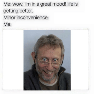 Life, Mood, and Wow: Me: wow, i'm in a great mood! life is  getting better.  Minor inconvenience:  Me: https://t.co/DQfI3myXqU
