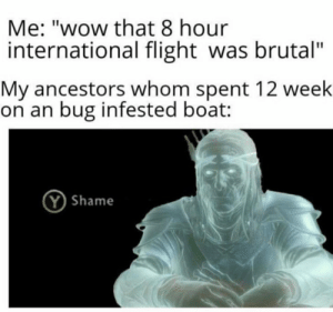 """Family, Reddit, and Wow: Me: """"wow that 8 hour  international flight was brutal""""  My ancestors whom spent 12 week  on an bug infested boat:  YShame I Have Dishonored My Family"""