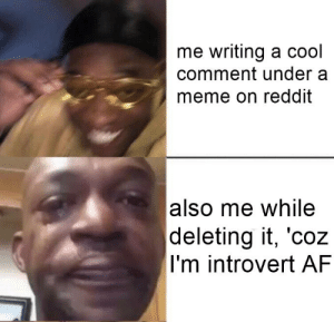 You have a comment in progress, are you sure you want to discard it?: me writing a cool  comment under a  meme on reddit  also me while  deleting it, 'coz  I'm introvert AF You have a comment in progress, are you sure you want to discard it?