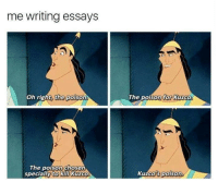 Writing Essay: me writing essays  Oh right, the poison  The poison chosen  specially to kill Kuzco.  The poison for Kuzco  Kuzco poison.