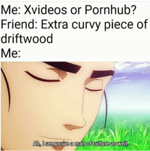 Pornhub, Xvideos, and Culture: Me: Xvideos or Pornhub?  Friend: Extra curvy piece of  driftwood  Me:  Ah, Iseeyoure a man of culture as well.  as well