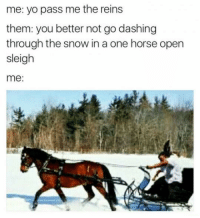 Yo, Horse, and Snow: me: yo pass me the reins  them: you better not go dashing  through the snow in a one horse open  sleigh  me:
