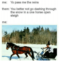 Currently my favorite meme template  it kills me every time: me: Yo pass me the reins  them: You better not go dashing through  the snow in a one horse open  sleigh  me Currently my favorite meme template  it kills me every time