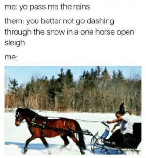 Dank, Memes, and Target: me: yo pass me the reins  them: you better not go dashing  through the snow in a one horse open  sleigh  me: Jingle bell by Bongnazi FOLLOW 4 MORE MEMES.