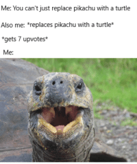 Me: You can't just replace pikachu with a turtle  Also me: *replaces pikachu with a turtle*  *gets 7 upvotes*  Me: