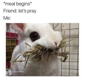 Memes, Good, and Christian Memes: meal begins*  Friend: let's pray  Me:  EpicChristian Memes 11 More of the Latest Christian Memes That Gave Us a Good Laugh This Week