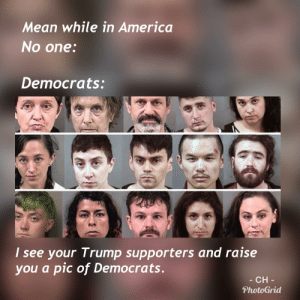 Nice looking group of civic minded people.: Mean while in America  No one  Democrats:  I see your Trump supporters and raise  you a pic of Democrats  CH  PhotoGrid Nice looking group of civic minded people.