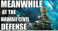 Funny, Hawaii, and Meanwhile In: MEANWHILE  AT THE  HAWAIICIVIL  DEFENSE Meanwhile in Hawaii