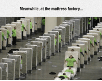 Tumblr, Blog, and Http: Meanwhile, at the mattress factory.. srsfunny:Mattress Factory Breaks
