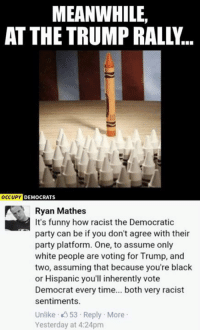 Memes, Party, and Democratic Party: MEANWHILE,  AT THE TRUMP RALL...  OCCUPY DEMOCRATS  Ryan Mathes  It's funny how racist the Democratic  party can be if you don't agree with their  party platform. One, to assume only  white people are voting for Trump, and  two, assuming that because you're black  or Hispanic you'll inherently vote  Democrat every time... both very racist  sentiments.  Unlike 53 Reply More  Yesterday at 4:24pm