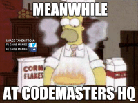 MEANWHILE  IMAGE TAKEN FROM:  F1 GAME MEMES  F1 GAMEMEMES  f  CORN  FLAKES  ATCODEMASTERS HQ LEAKED image of Codemasters' game developers working on F1 2015.  -Cham