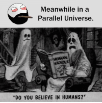 "Memes, Believable, and Humanity: Meanwhile in a  Parallel Universe  s HUMAN  ""DO YOU BELIEVE IN HUMANS?'"