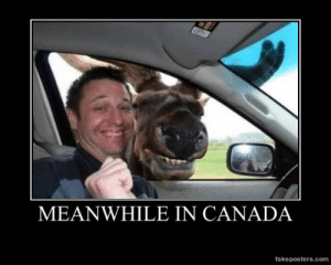 very-demotivational:  Meanwhile In Canada - Demotivational Poster: MEANWHILE IN CANADA  fakeposters.com very-demotivational:  Meanwhile In Canada - Demotivational Poster