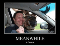 MEANWHILE  In Canada (JK)