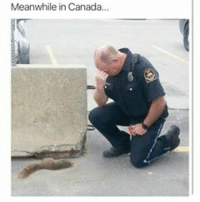 PoorGuy: Meanwhile in Canada... PoorGuy