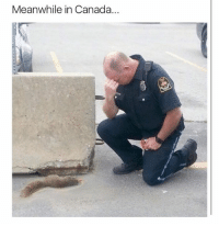 RIP: Meanwhile in Canada... RIP