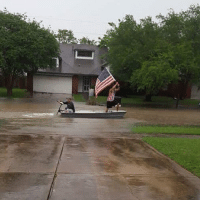 America, Memes, and Houston: Meanwhile in Houston... . merica america usa flood boat houston thesecolorsdontrun