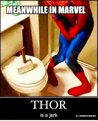 @memesofheroes - 😂: MEANWHILE IN MARVEL  THOR  is a jerk  IG MEMESOFHEROES @memesofheroes - 😂