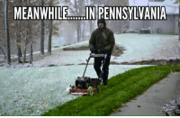 meanwhile in: MEANWHILE IN PENNSYLVANIA