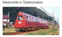 Dank, 🤖, and Meanwhile In: Meanwhile in Tobleronistan.  271