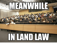 Credit: Jamie Ewing: MEANWHILE  N LAND LAW  quick meme com Credit: Jamie Ewing