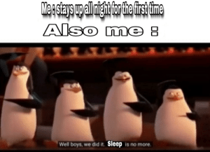 Meme, Dank Memes, and Mind: Meastays upall igh for the fis ime  Also me  Well boys, we did it. Sleep is no more I know, It may be a dead meme, but this is the first one that came in my mind