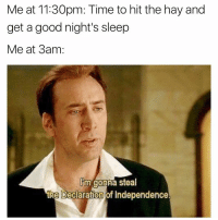 Funny, Meme, and Declaration of Independence: Meat 11:30pm: Time to hit the hay and  get a good night's sleep  Me at 3am  lim gonna steal  the Declaration of Independence. (@dogsbeingbasic)