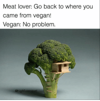 Memes, Vegan, and Back: Meat lover: Go back to where you  came from vegan!  Vegan: No problem  @highfiveexpert @lutalo8 is kind to vegans and all other creatures. Check out @lutalo8 👍🏼 🙌🏼