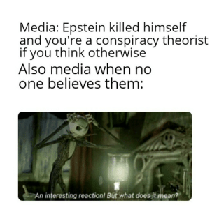 Bitch, Mean, and What Does: Media: Epstein killed himself  and you're a conspiracy theorist  if you think otherwise  Also media when no  one believes them:  An interesting reaction! But what does it mean? (Laughter) Stupid bitch!