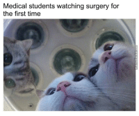 Time, Medical, and First: Medical students watching surgery for  the first time So Its Like That