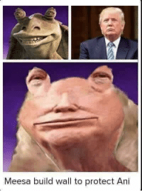 Still waiting for that wall: Meesa build wall to protect Ani Still waiting for that wall