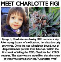 """Being Alone, Click, and Family: MEET CHARLOTTE FIGI  IG STANDUPI  By age 3, Charlotte was having 300+ seizures a day.  After trying dozens of medications, her situation only  got worse. Once she was wheelchair bound, out of  desperation her parents tried CBD oil. Within the  first week of taking the CBD, Charlotte had ZERO  seizures. The story was so incredible, that the strain  of weed was named after her, """"Charlottes Web"""" At one point her parents made the decision to put her in a medically induced coma to give her body a chance to live. No western medicine could help her, but her family didn't give up and her grandfather did some independent research and found out about CBD oil. On her first week of CBD oil she had ZERO seizures. There isn't another product that we have access to that is this powerful and it has zero negative side effects. Everyone should have a bottle of CBD and everyone should be more mindful of preventative maintenance. Let's stop waiting for something series to occur or even pass down unhealthy habits because we can't think beyond what we been program to think. There isn't another herb that is as regulated as Marijuana and that alone should tell you how powerful it is. When it comes to my oil it's the BEST on the market. You will not find a higher quality oil that is even priced at ours. I've been selling this oil for over a year now and i honestly have no clue on the amount of lives I've changed and even saved. From sleeping disorders, inflammation, depression, cancers, tumors and PTSD i have received hundreds of positive reviews on our website. - Click the link in Bio - Store - Holistic Health to grab your oil on sale now. Please recommend this oil to friends and family, i can promise you we are the best organic non gmo, sun grown CBD oil company on the market and our oil is available for purchase in all 50 states and can shipped internationally. - Follow my back up account just Incase IG decides to censor me @_standup911 & My event page @_m"""