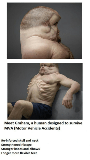 The TAC (Transport Authority in Victoria Australiasort of like the DMV in the USA) have launched Graham, designed to survive a car crash: Meet Graham, a human designed to survive  MVA (Motor Vehicle Accidents)  Re-inforced skull and neck  Strengthened ribcage  Stronger knees and elbows  Longer more flexible feet The TAC (Transport Authority in Victoria Australiasort of like the DMV in the USA) have launched Graham, designed to survive a car crash