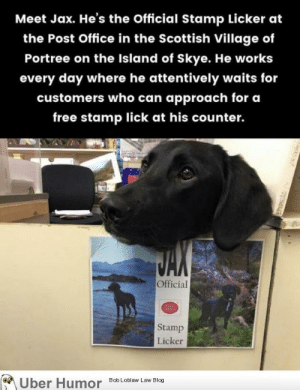Post Office, Tumblr, and Uber: Meet Jax. He's the Official Stamp Licker at  the Post Office in the Scottish Village of  Portree on the Island of Skye. He works  every day where he attentively waits for  customers who can approach for ca  free stamp lick at his counter.  omers who can approach tor e  2  Official  Stamp  Licker  Bob Loblaw Law Blog  Uber Humor failnation:  Mleming for a living