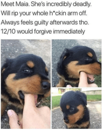 "Cute, Arm, and Via: Meet Maia. She's incredibly deadly  Will rip your whole h*ckin arm off  Always feels guilty afterwards tho  12/10 would forgive immediately <p>Hecking cute via /r/wholesomememes <a href=""https://ift.tt/2IfEXDV"">https://ift.tt/2IfEXDV</a></p>"