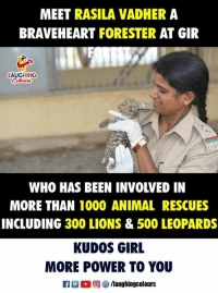 More Power: MEET RASILA VADHER A  BRAVEHEART FORESTER AT GIR  LAUGHING  WHO HAS BEEN INVOLVED IN  MORE THAN 1000 ANIMAL RESCUES  INCLUDING 300 LIONS & 500 LEOPARDS  KUDOS GIRL  MORE POWER TO YOU  R 0 @] ㊧ /laughingcolours