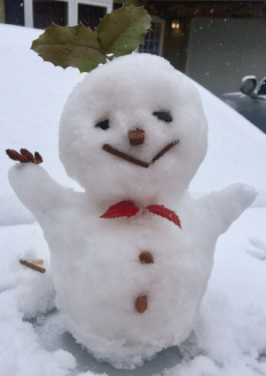 Meet Snow Hunk Maximus! he took a while to make not sure if the positioning is great for a photo but I still love him :): Meet Snow Hunk Maximus! he took a while to make not sure if the positioning is great for a photo but I still love him :)