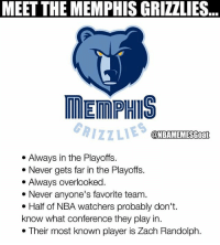 Facts 💀😂 - Follow @_nbamemes._: MEET THE MEMPHIS GRIZZLIES  ..  MEMPHIS  RIZZLIES  @NBAMEMESGoat  . Always in the Playoffs.  * Never gets far in the Playoffs.  . Always overlooked  * Never anyone's favorite team.  . Half of NBA watchers probably don't.  know what conference they play in.  . Their most known player is Zach Randolph. Facts 💀😂 - Follow @_nbamemes._