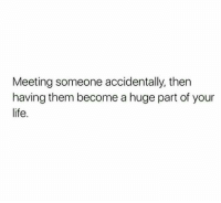 Life, Them, and Huge: Meeting someone accidentally, then  having them become a huge part of your  life.