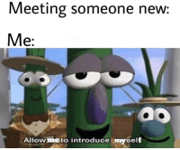 Omg, Reddit, and Relatable: Meeting someone new  Me:  ao  Allow me to int  roduce mysel