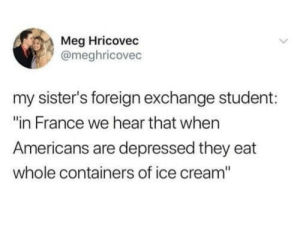 "She's not wrong: Meg Hricovec  @meghricovec  my sister's foreign exchange student:  ""in France we hear that when  Americans are depressed they eat  whole containers of ice cream"" She's not wrong"