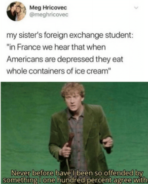 "meirl: Meg Hricovec  @meghricovec  my sister's foreign exchange student:  ""in France we hear that when  Americans are depressed they eat  whole containers of ice cream""  Never before have I been so offended by  something I one hundred percent agree with meirl"