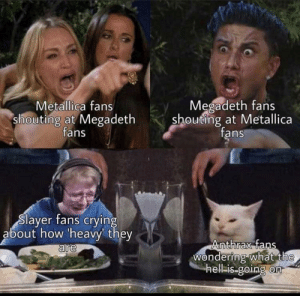 Not mine, love metal memes!!!!: Megadeth fans  shouting at Metallica  fans  Metallica fans  shouting at Megadeth  fans  Slayer fans crying  about how 'heavy they  are  Anthrax fans  Wondering what the  hell-is-going on Not mine, love metal memes!!!!