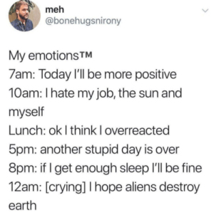 Crying, Meh, and Aliens: meh  @bonehugsnirony  My emotions TM  7am: Today I'll be more positive  10am: I hate my job, the sun and  myself  Lunch: ok I think I overreacted  5pm: another stupid day is over  8pm: if I get enough sleep I'll be fine  12am: [crying] I hope aliens destroy  earth Then calling out to round things out